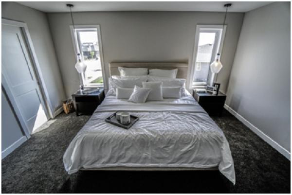 Replacing Your Carpet