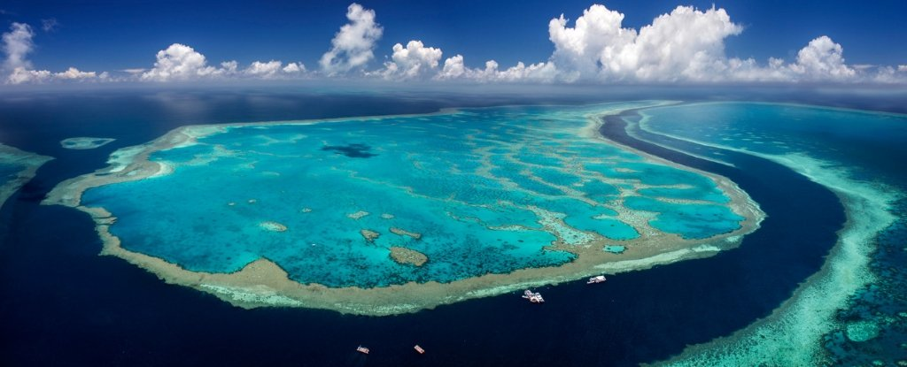 how to explore the great barrier reef